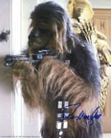 Peter Mayhew from the movie STAR WARS ( private signing )