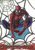 Spiderman Clear Chaser Non-Sport Card